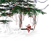 tree christmas & poses