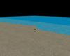 Beach no background