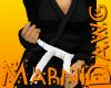 White Belt Black Gi