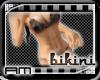 [AM] Bikini Floral Brown