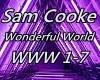 Sam Cooke Wonderful
