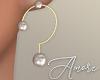 $ Gold Earrings ?