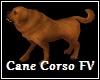 Cane Corso Dog FV