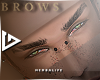 K99-brows