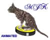 Vacuuming Cat
