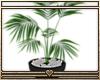 § Plant [Driv]