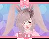🎀 Bunny ears slate