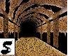 Leopard Hallway