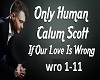 Calum scott-If Out Love