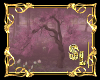 *Sakura Tree