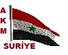 flag Syrian