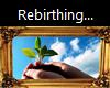 Gold Frame {Rebirthing}