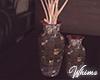 Glam Glow Vase Plant