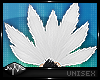 `| Neko Tails - White