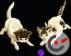 Playing kitties