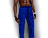 Blue Velvet Pants
