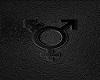 Transgender back logo