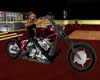 harley bike 3