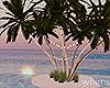 Secret Island Palms