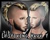 [V]Viking Hawk Y