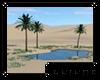 [S] Desert Oasis