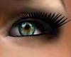 [M] Turquoise Eyes