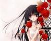 Fallin Red Rose~