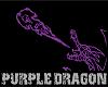 Purple Dragon YouTub