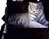 white tiger poseless bed