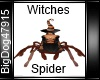 [BD] Witches Spider