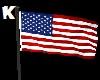 K. American Flag Anim
