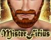Full Beard Auburn