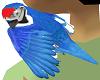 Fires Parrot