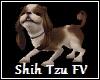 Shih Tzu FV