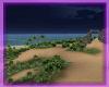 Viv: Beach at Night