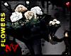 Dark LoveWHITE-FLOWERS[M