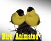 Bird Animated ^w^