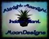 ~MD~ Indoor Club Plant
