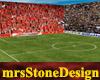 *MS* WK Soccer stadion