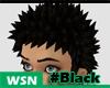 [wsn]UDO#Black