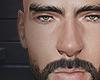 brows/beard