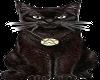 Wiccan Black Cat