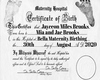Custom HH Birth Cert