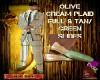 DM:OLIVE CREAM FULLSUIT