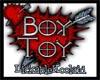 *Boy Toy* Sticker