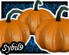 [HP] Pumpkins