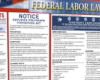 federal labor laws poser