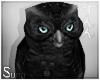 S: Owl