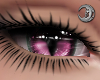 Feline Candy Eyes F