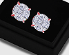 Solitaire Rose Studs